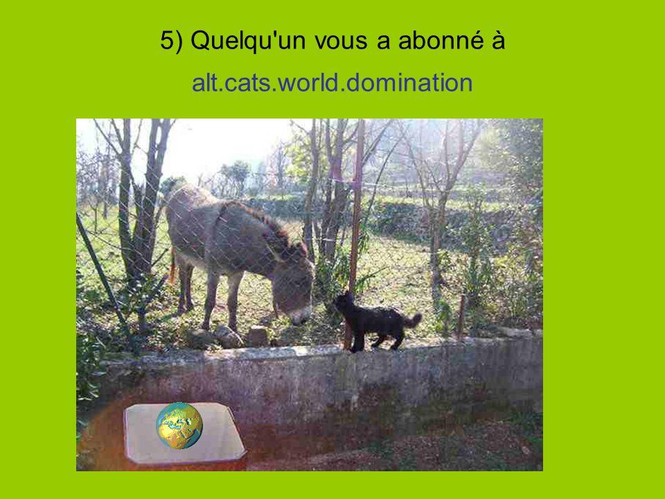 5) Quelqu un vous a abonné à alt.cats.world.domination
