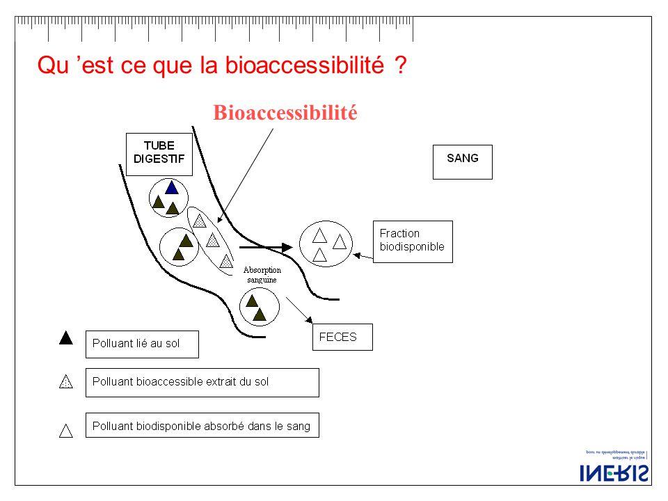 Qu 'est ce que la bioaccessibilité