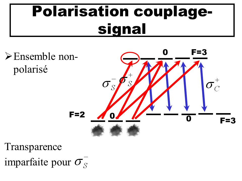 Polarisation couplage-signal