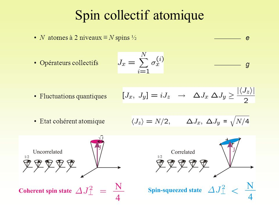 Spin collectif atomique