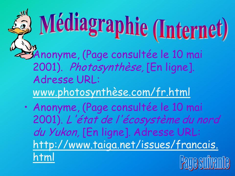 Médiagraphie (Internet)