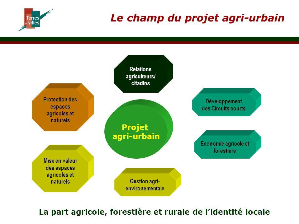 Le champ du projet agri-urbain