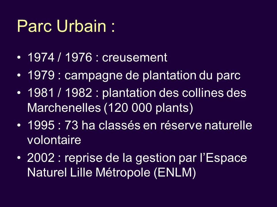 Parc Urbain : 1974 / 1976 : creusement