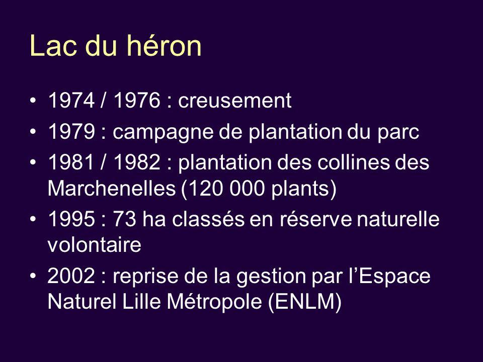 Lac du héron 1974 / 1976 : creusement