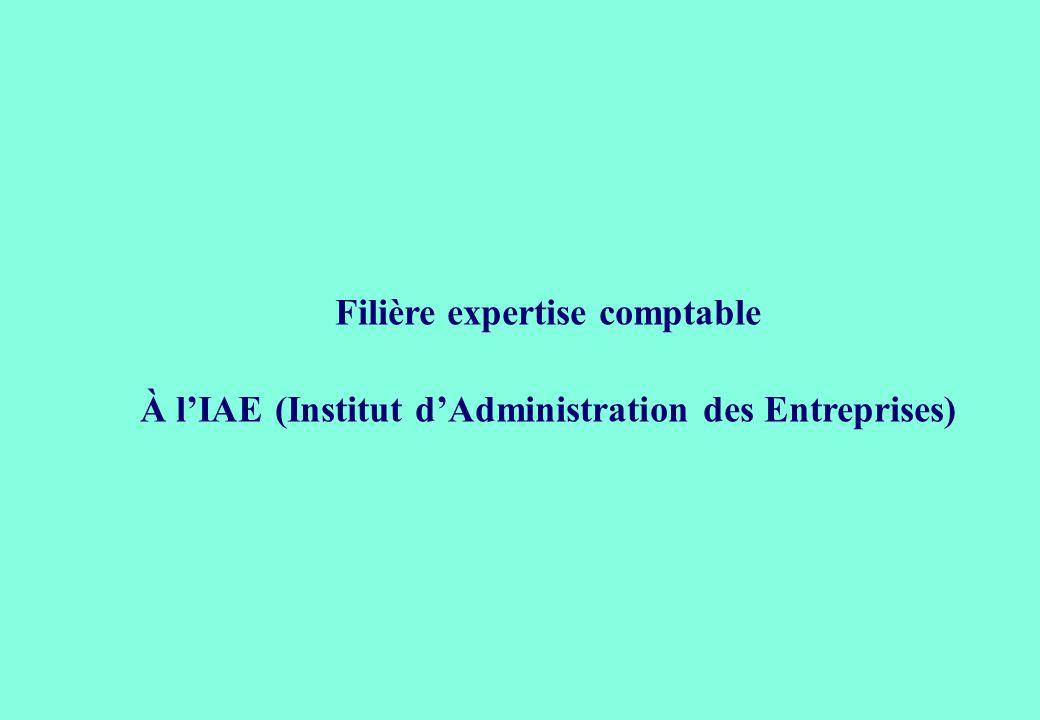 Filière expertise comptable