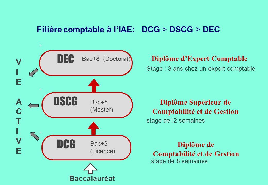 Filière comptable à l'IAE: DCG > DSCG > DEC
