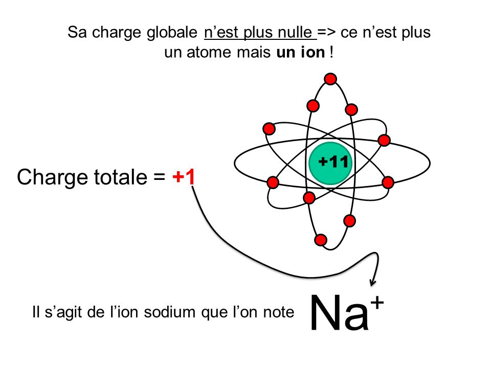 Il s'agit de l'ion sodium que l'on note