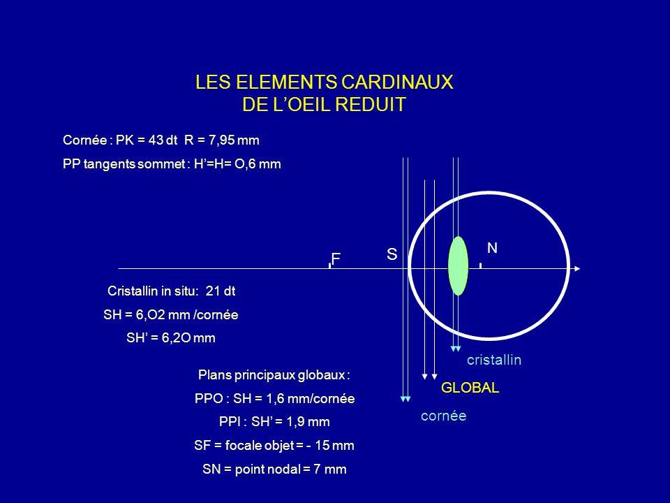 LES ELEMENTS CARDINAUX DE L'OEIL REDUIT