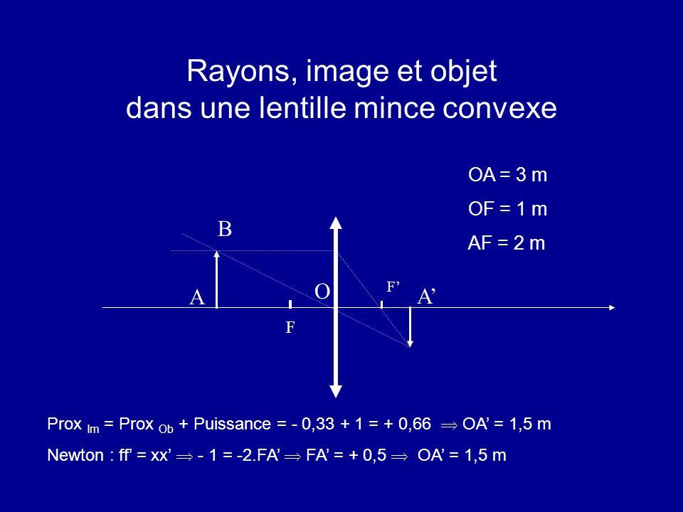 Rayons, image et objet dans une lentille mince convexe