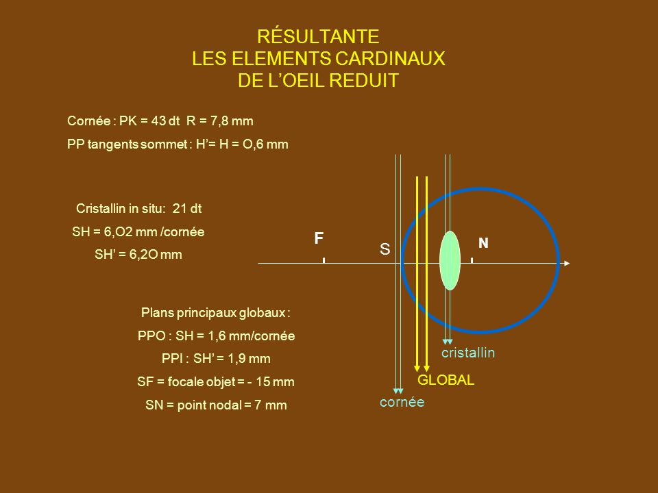 RÉSULTANTE LES ELEMENTS CARDINAUX DE L'OEIL REDUIT