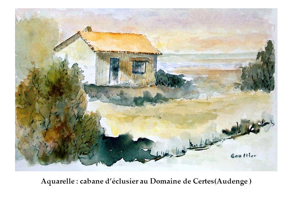 Aquarelle : cabane d'éclusier au Domaine de Certes(Audenge )