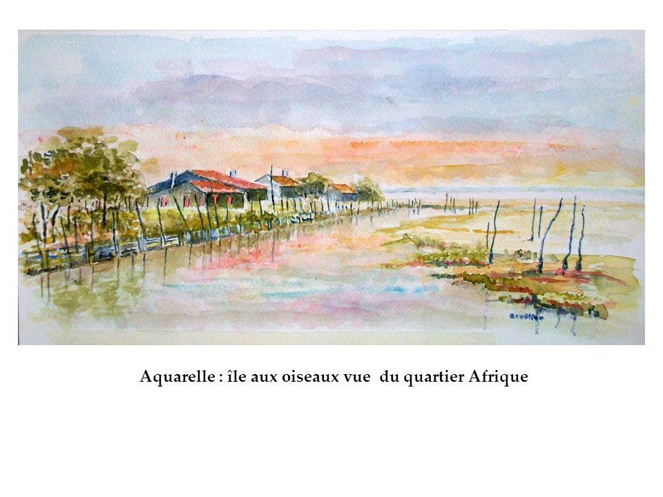 Aquarelle : île aux oiseaux vue du quartier Afrique