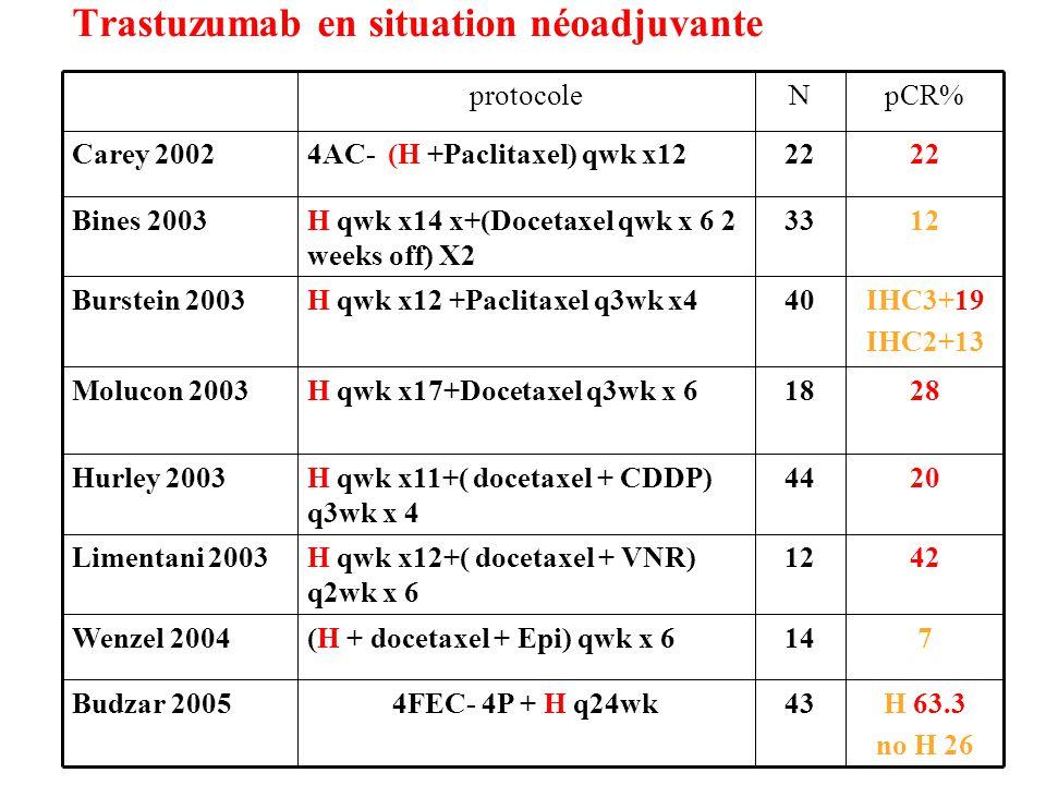 Trastuzumab en situation néoadjuvante