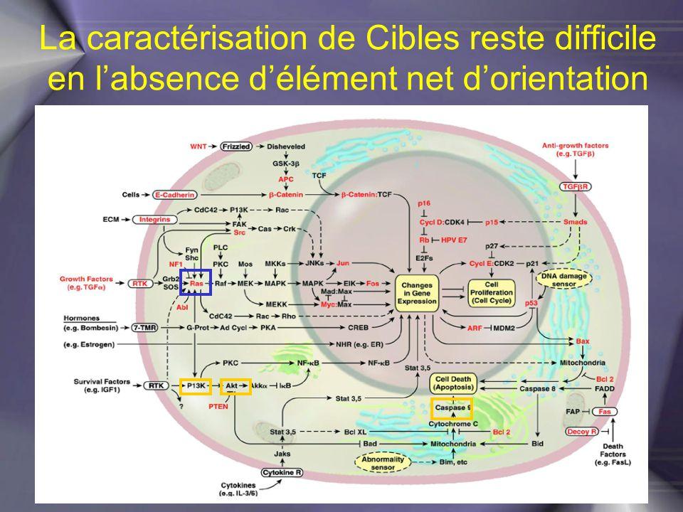 La caractérisation de Cibles reste difficile en l'absence d'élément net d'orientation