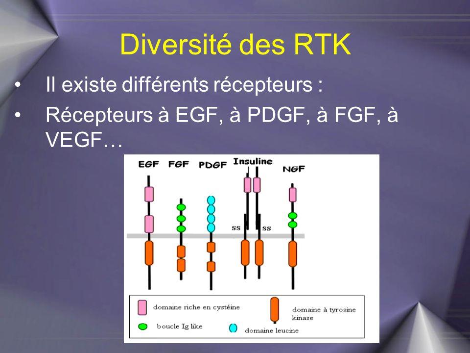 Diversité des RTK Il existe différents récepteurs :