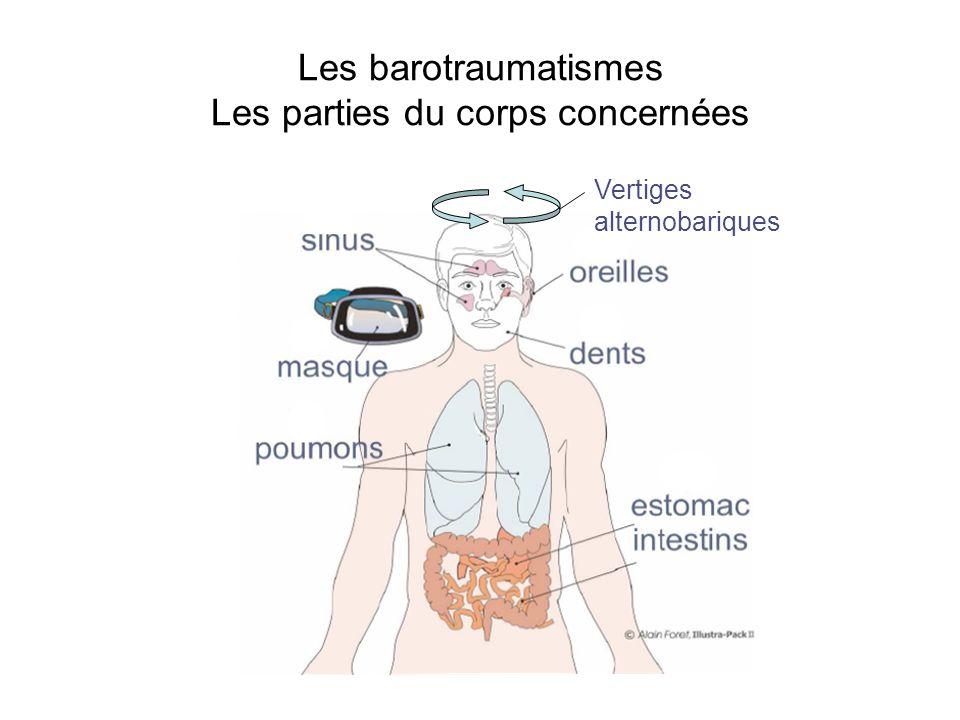 Les barotraumatismes Les parties du corps concernées