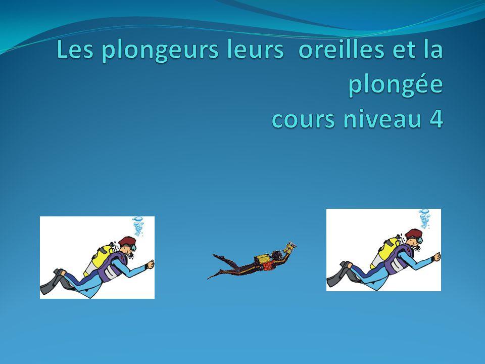 Les plongeurs leurs oreilles et la plongée cours niveau 4