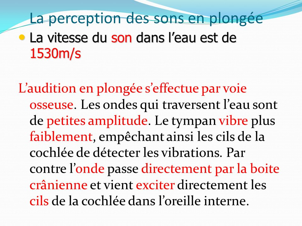 La perception des sons en plongée