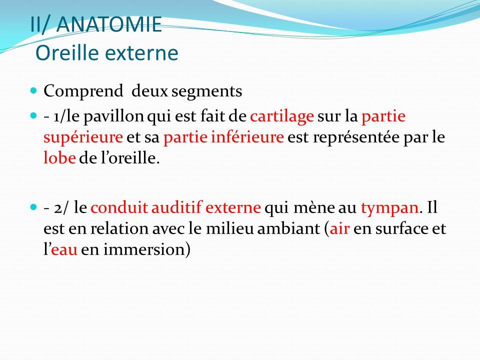 II/ ANATOMIE Oreille externe