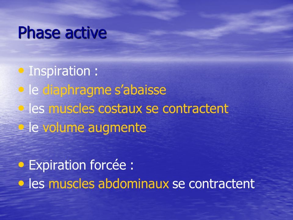 Phase active Inspiration : le diaphragme s'abaisse