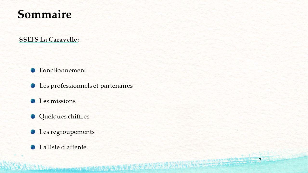Sommaire SSEFS La Caravelle : Fonctionnement