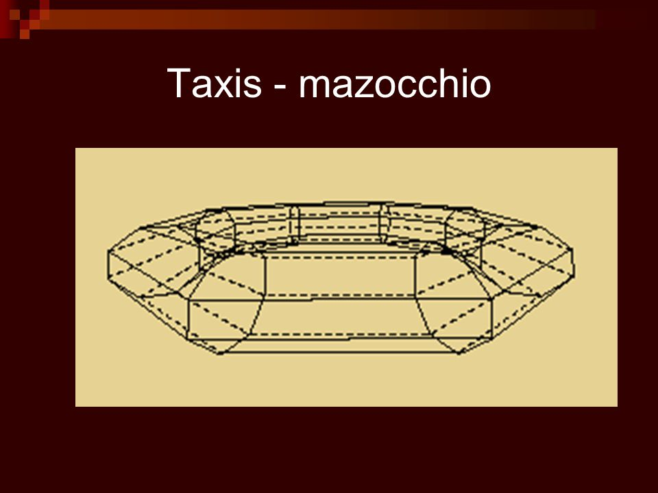 Taxis - mazocchio