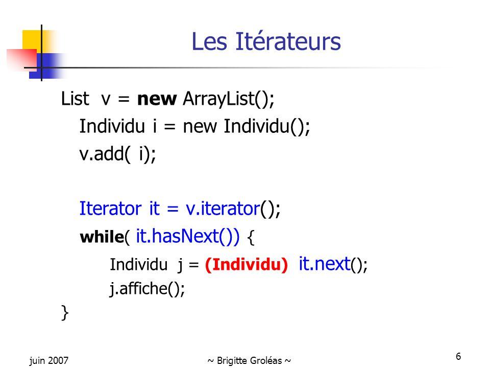 Les Itérateurs List v = new ArrayList(); Individu i = new Individu();