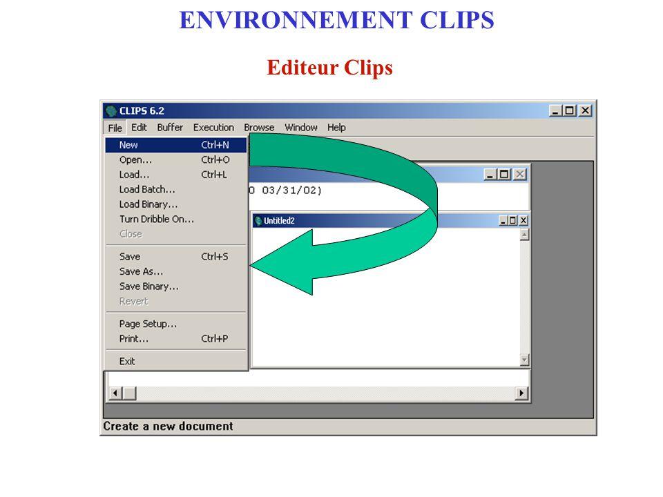 ENVIRONNEMENT CLIPS Editeur Clips