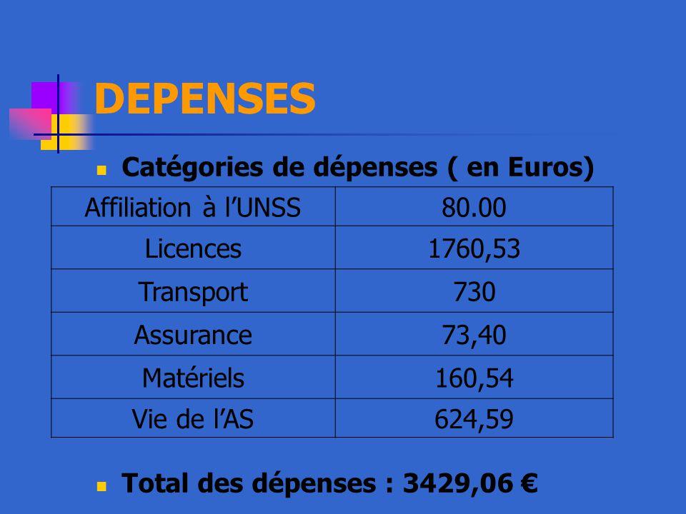 DEPENSES Catégories de dépenses ( en Euros)
