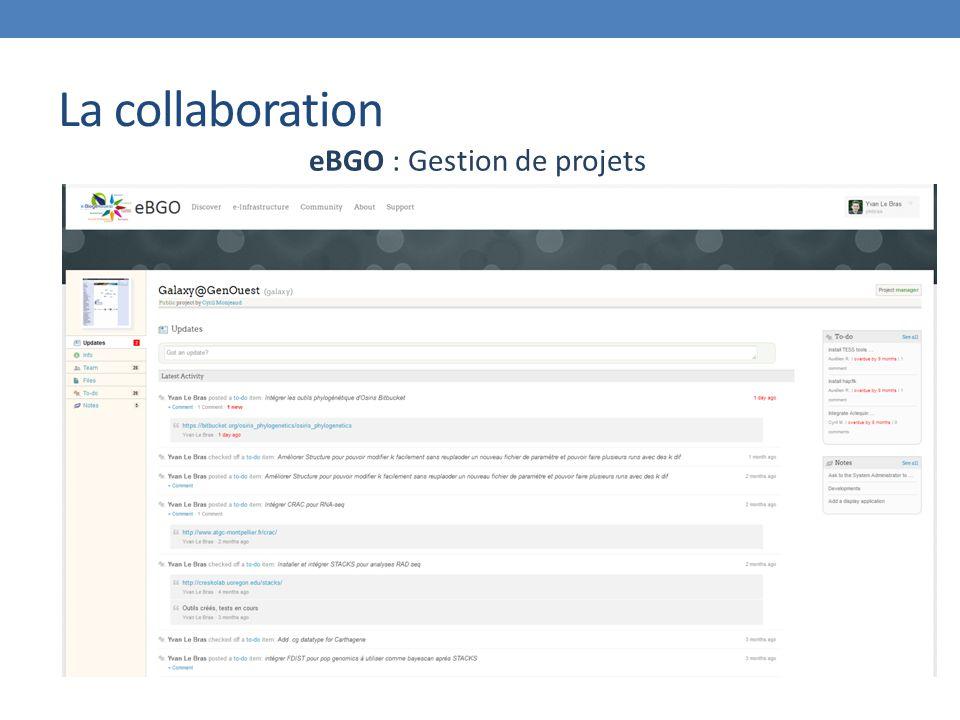 eBGO : Gestion de projets