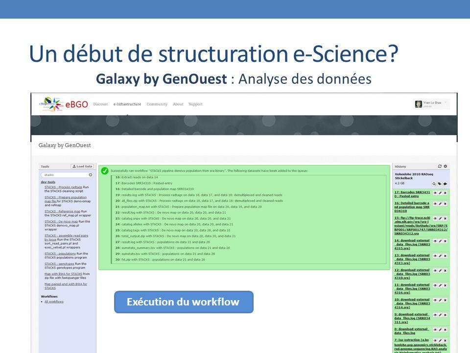 Un début de structuration e-Science