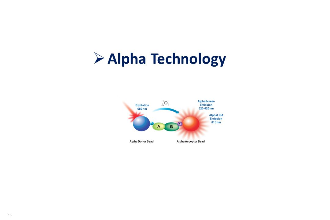 Alpha Technology