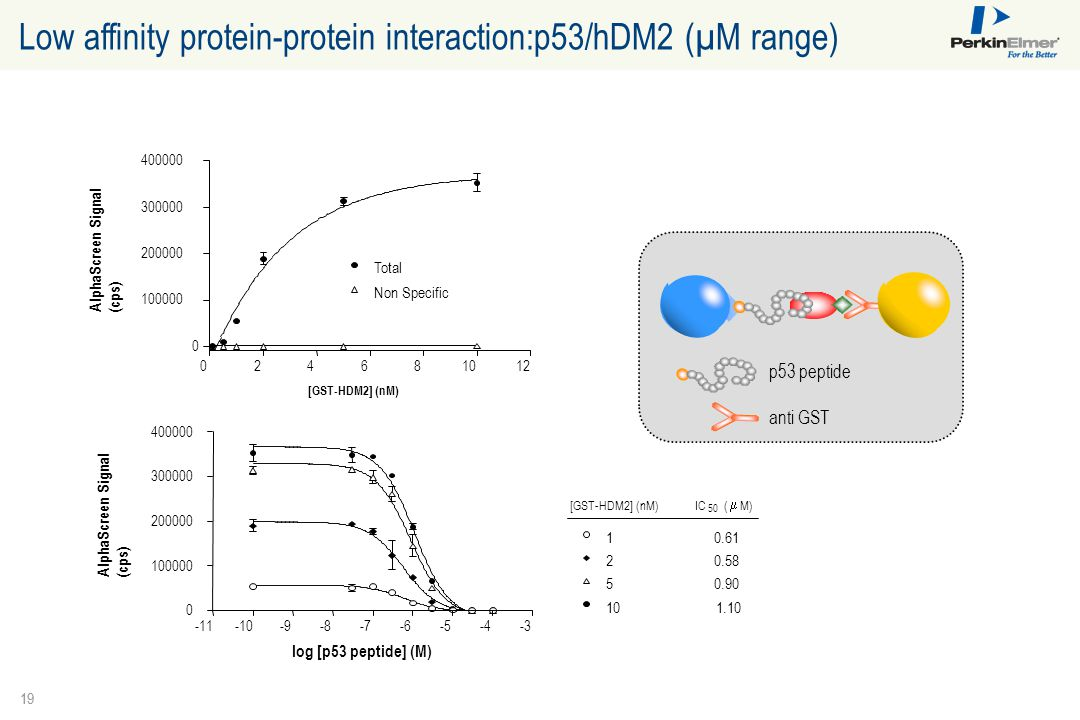 Low affinity protein-protein interaction:p53/hDM2 (µM range)