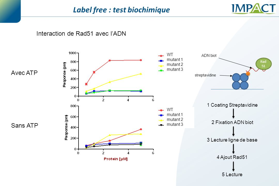 Label free : test biochimique
