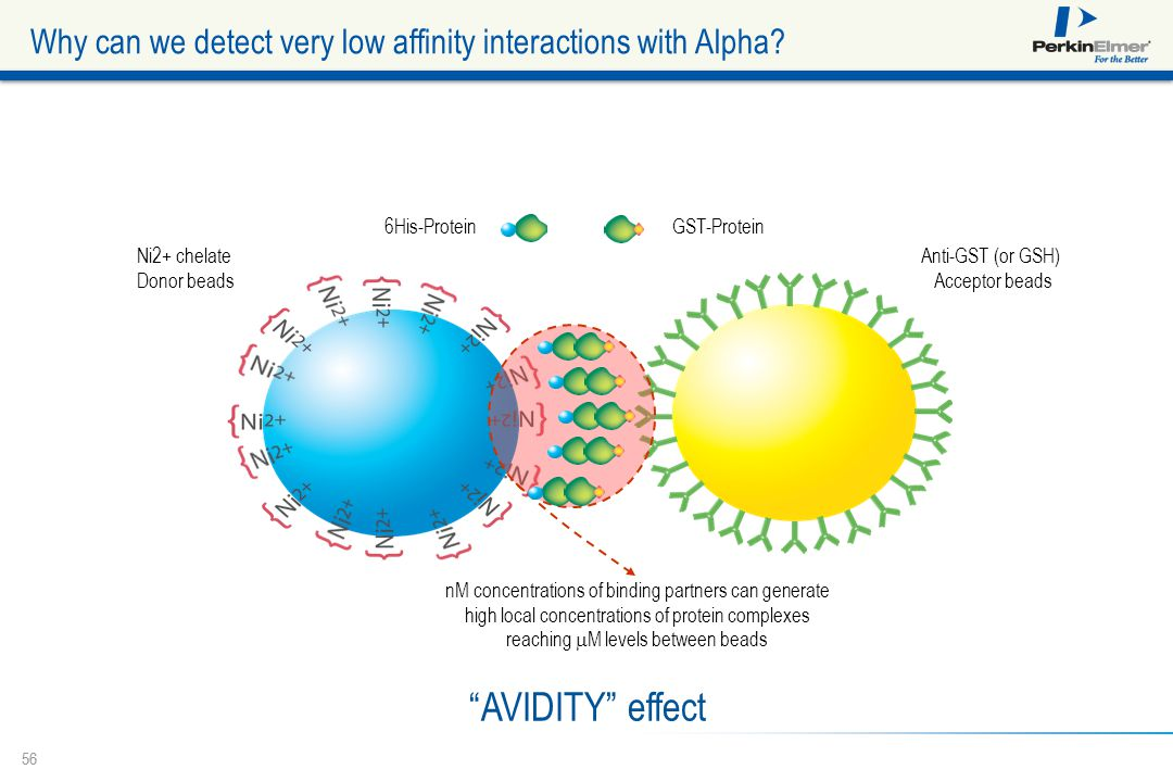 Why can we detect very low affinity interactions with Alpha