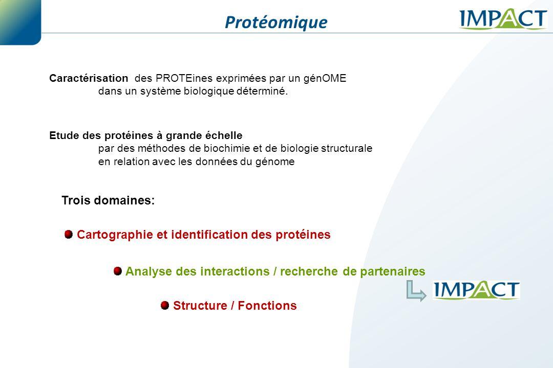 Analyse des interactions / recherche de partenaires