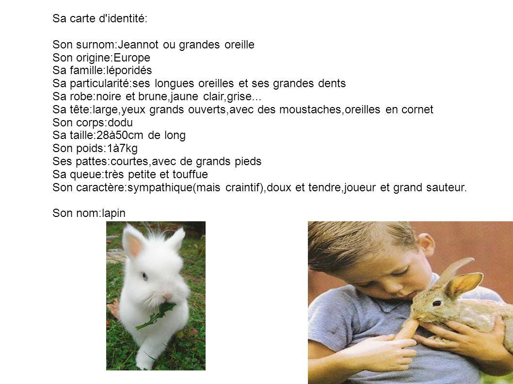 Sa carte d identité: Son surnom:Jeannot ou grandes oreille. Son origine:Europe. Sa famille:léporidés.