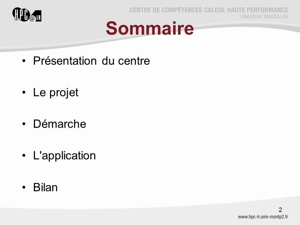 Sommaire Présentation du centre Le projet Démarche L application Bilan