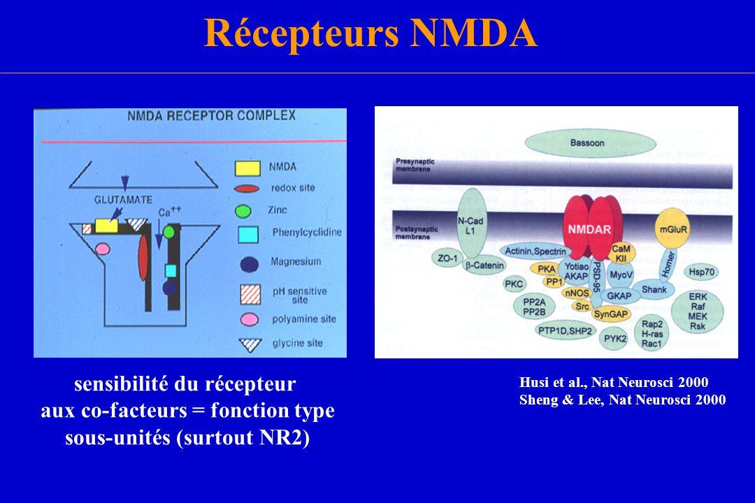 Récepteurs NMDA sensibilité du récepteur