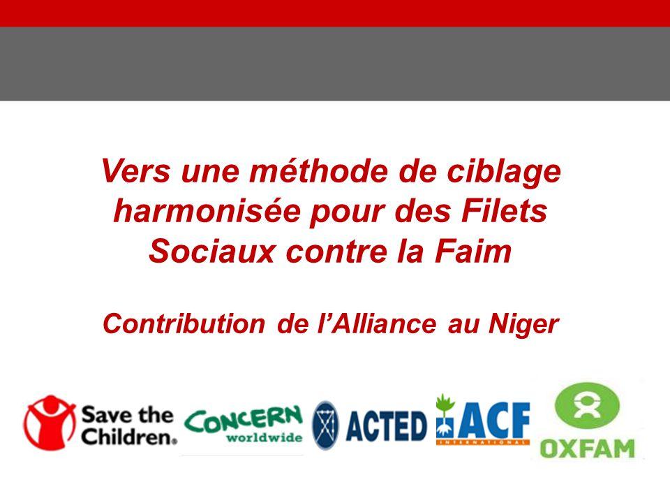Contribution de l'Alliance au Niger