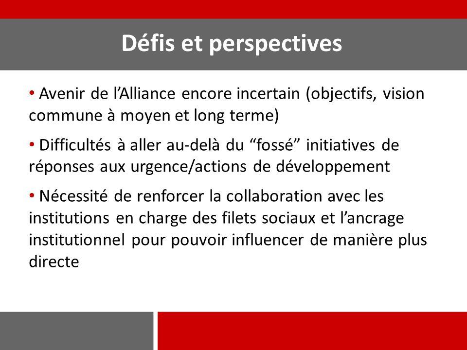 Défis et perspectives Avenir de l'Alliance encore incertain (objectifs, vision commune à moyen et long terme)