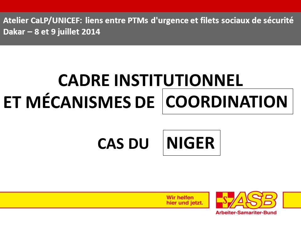 CADRE INSTITUTIONNEL ET MÉCANISMES DE COORDINATION NIGER CAS DU