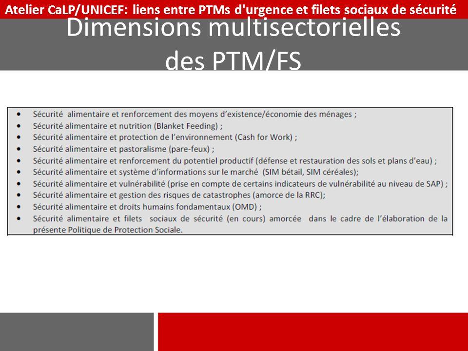 Dimensions multisectorielles des PTM/FS