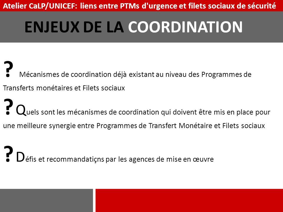 ENJEUX DE LA COORDINATION