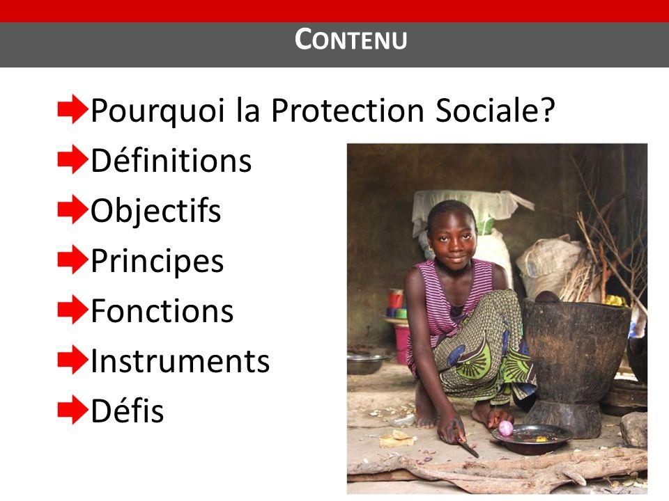 Pourquoi la Protection Sociale Définitions Objectifs Principes