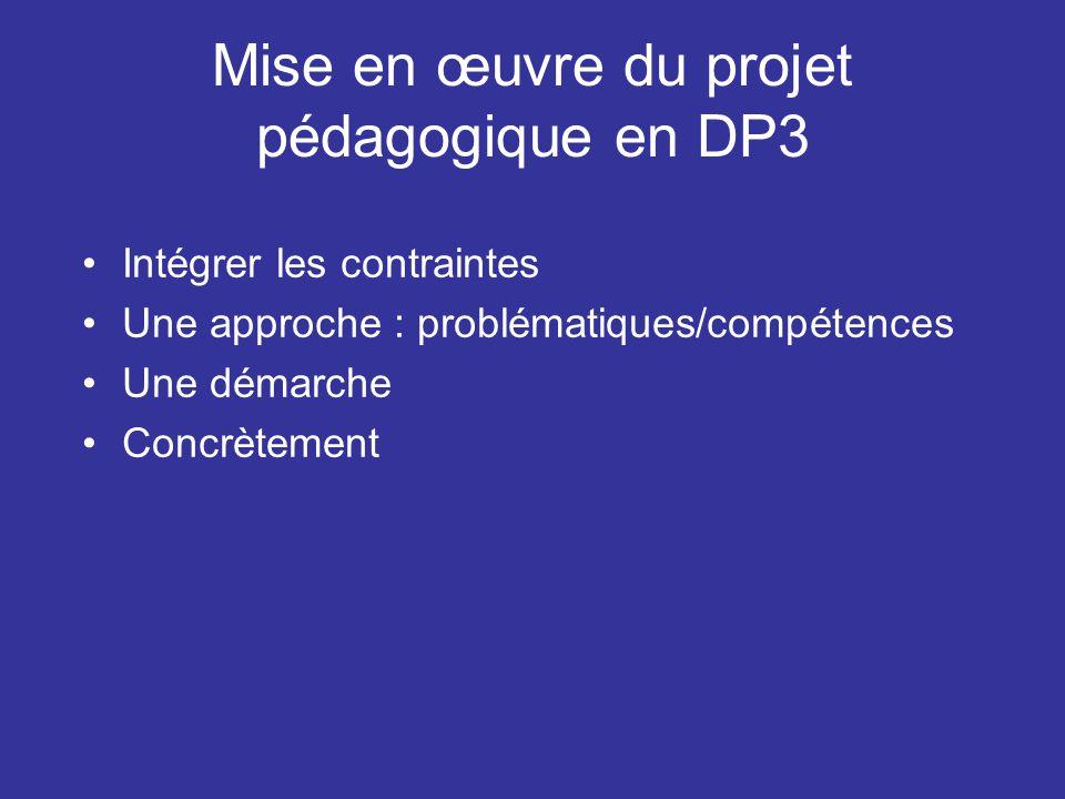 Mise en œuvre du projet pédagogique en DP3