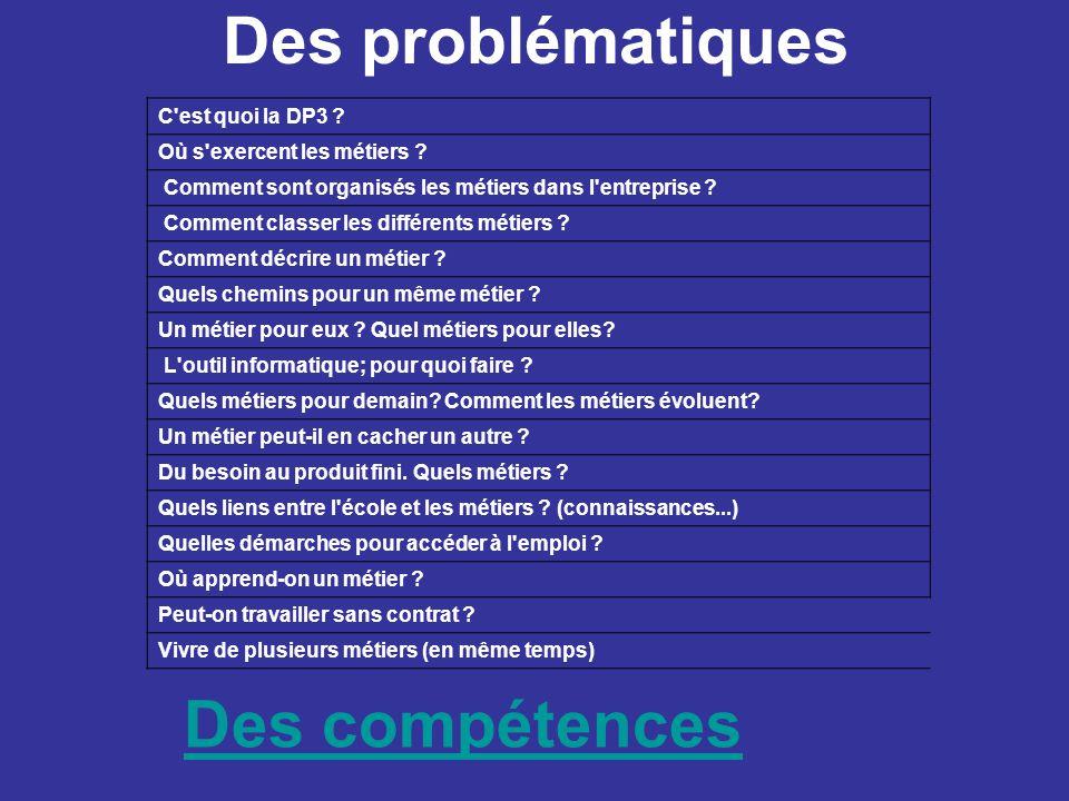 Des problématiques Des compétences C est quoi la DP3