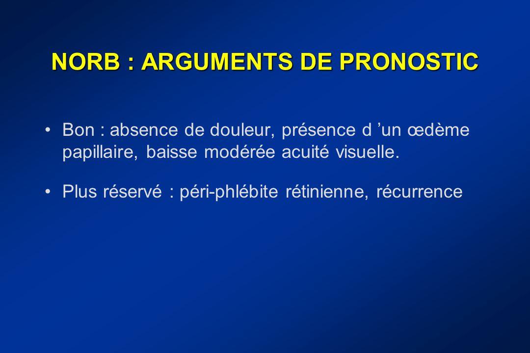 NORB : ARGUMENTS DE PRONOSTIC