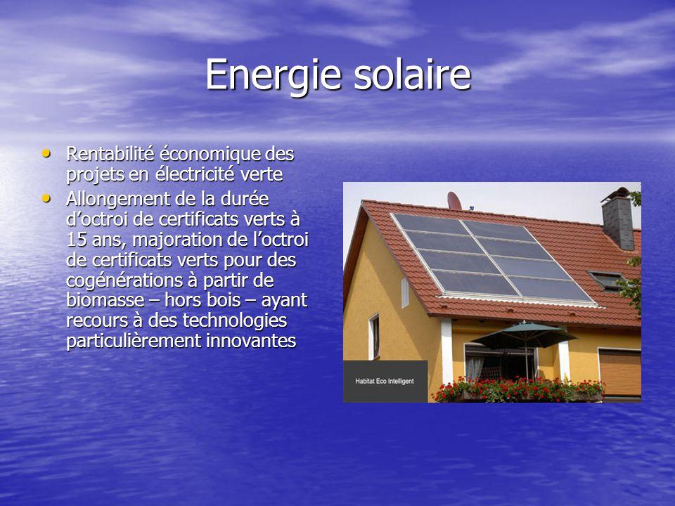 Energie solaire Rentabilité économique des projets en électricité verte.
