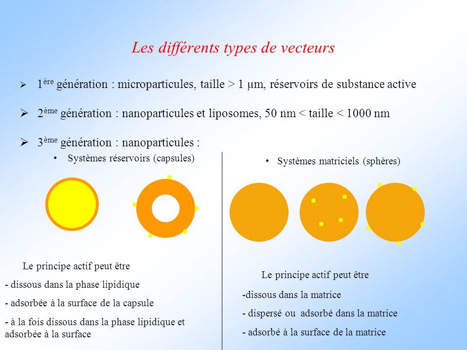 Les différents types de vecteurs